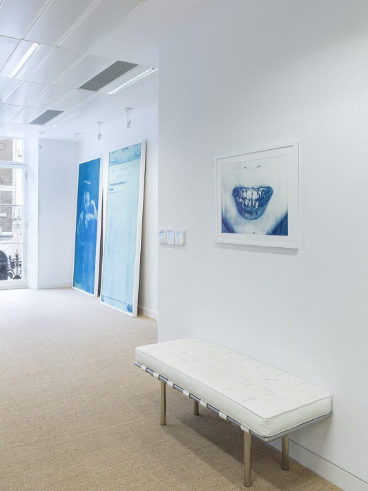Thomas Mailaender: Prussian Blue, installation view, Roman Road at Omer Tiroche Gallery, London, 25 August - 25 September 2015. © Ollie Hammick