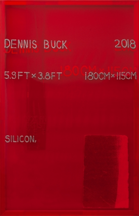 Dennis Buck, Samuel said, 2018. Silicone and styrofoam on plastic, 180 x 115 cm, unique. Courtesy of Roman Road and the artist. © Paul Niedermayer