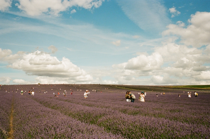 Yulia Lebedeva This could be us: Provence, 2021